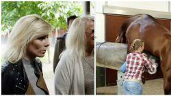 """""""Het 'kwakje' van een paard? Dat is dan 3.500 euro, alstublieft"""": Cathérine Moerkerke duikt in de wereld van luxepaarden"""