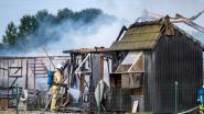 """VIDEO. Zware brand vernielt loods én duiventil: """"Mogelijk tientallen duiven omgekomen"""""""