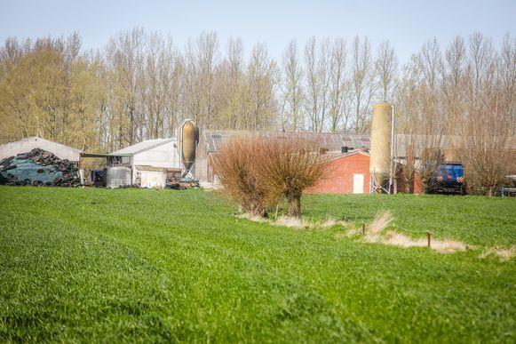 De plantage werd gevonden in een loods op de boerderij.
