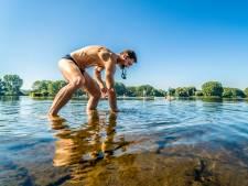 Blauwalg rukt op in Delftse Hout: 'We waarschuwen zwemmers'