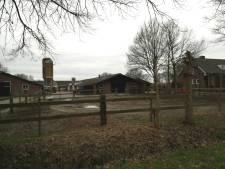Varkenshouderij minder in Heukelom: gemeente Oisterwijk blij met 'ontstening'