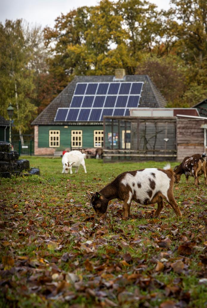 Kinderboerderij de Kleine Meer op archiefbeeld.