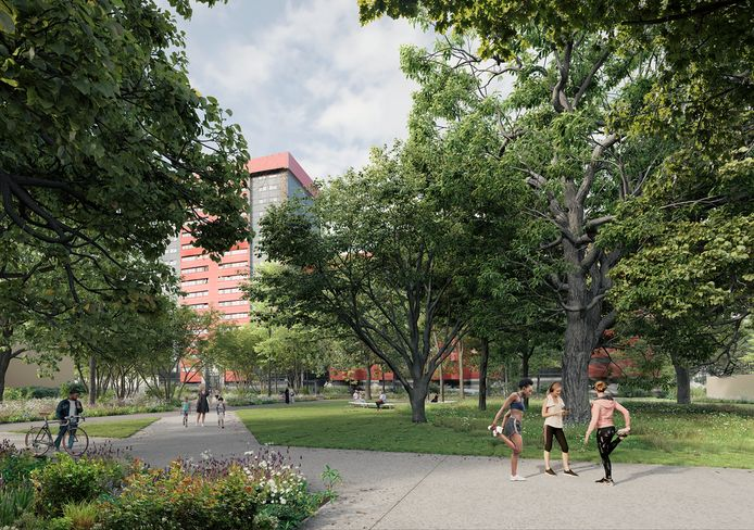 Een toekomstbeeld van het nieuwe park in Nieuw Gent.