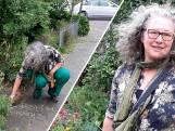 In Zutphen kun je overal 'botanische graffiti' tegenkomen