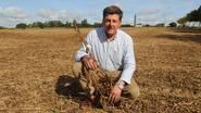 Mais maakt plaats voor soja