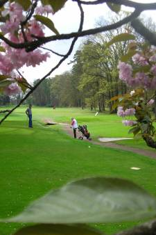 Golfclub Driene uit Hengelo geeft tweetal clinics op open dag