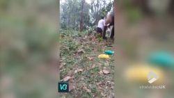 VIRAL3: Deze olifant heeft écht geen zin in een knuffel