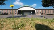 50 starters thuis bij Huyghebaert