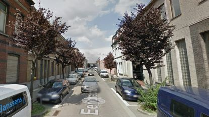 District Antwerpen vervangt bomen in Eendrachtstraat en Lange Lobroekstraat