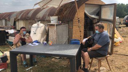 """Ria (58), Patrick (56), hun elf honden en paard wonen al twee weken in krakkemikkige stal: """"Elektriciteit en stromend water, nee dat is hier niet"""""""