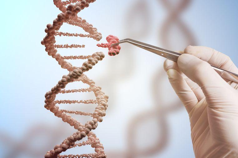 """De Cel Vermiste Personen gaat honderden onopgeloste verdwijningszaken van de laatste 10 jaar heropenen. """"Nu de nieuwe DNA-databank eindelijk operationeel wordt, komen we mogelijk tot een doorbraak in dossiers, waarbij we het spoor compleet bijster waren."""""""