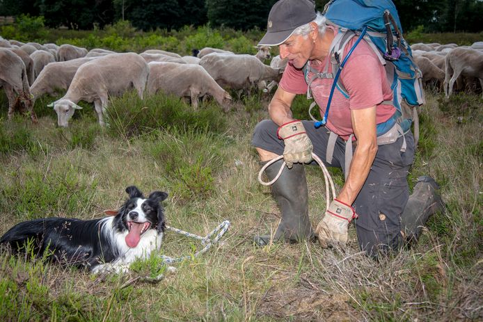 Paul met zijn schapen en Tante Deau.