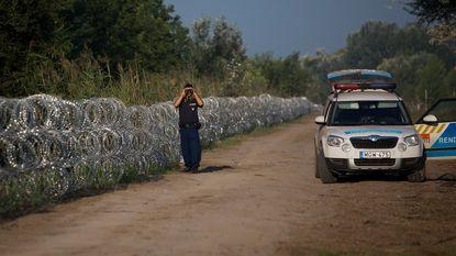 """""""Hongaars hek om vluchtelingen te weren is niet eens geschikt voor dieren"""""""
