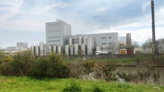 """FrieslandCampina investeert in nieuwe lijn en 20 extra medewerkers: """"Aalter is onze Europese draaischijf voor lang houdbare zuiveldranken"""""""