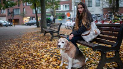 Twee vrouwen bedreigd in Antwerps park: mannen willen hun hond ontvoeren om te fokken