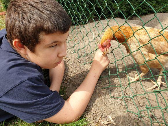 Cis Hemelaers (14) heeft verschillende aandoeningen. Autisme, een dwangstoornis, de motorische stoornis DCD, een zeer lage emotionele leeftijd en vermoedelijk ook Gilles de la Tourette.