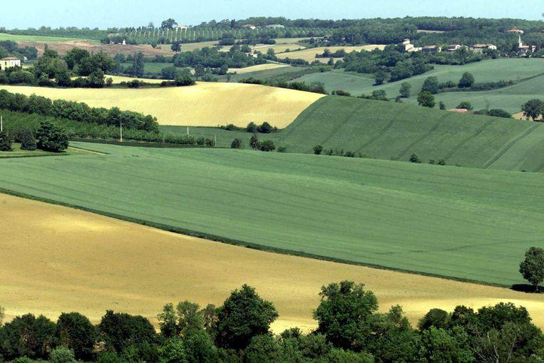 Glooiende velden in het zuidwesten van Frankrijk. Beeld Reuters