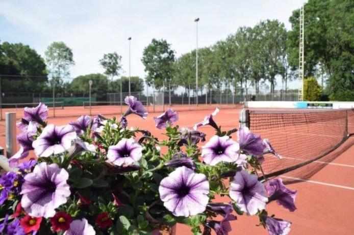 De Lawn Tennisclub Altena bestaat 50 jaar.
