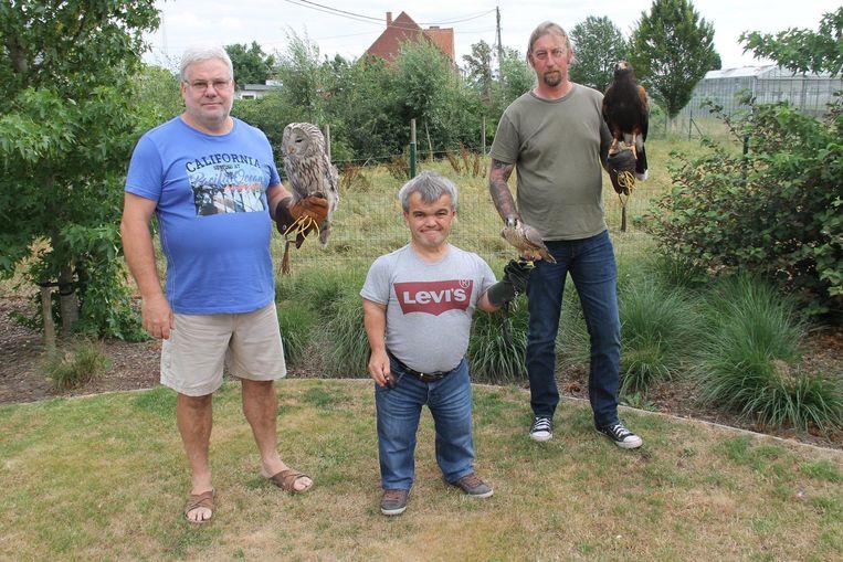 Kernleden Rik Hollevoet, Filip Braeckevelt en Micha Vandorpe tonen enkele van hun roofvogels.