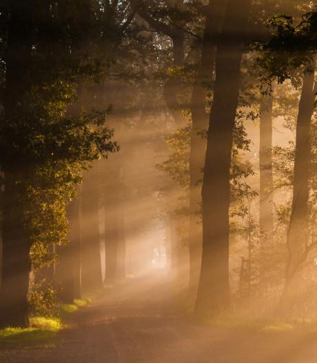 Besters maakt mooiste foto van Wierden