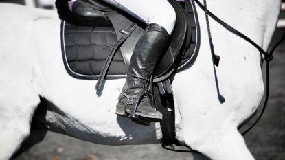 Vrouw (38) vertrappeld door paard: slachtoffer overleden