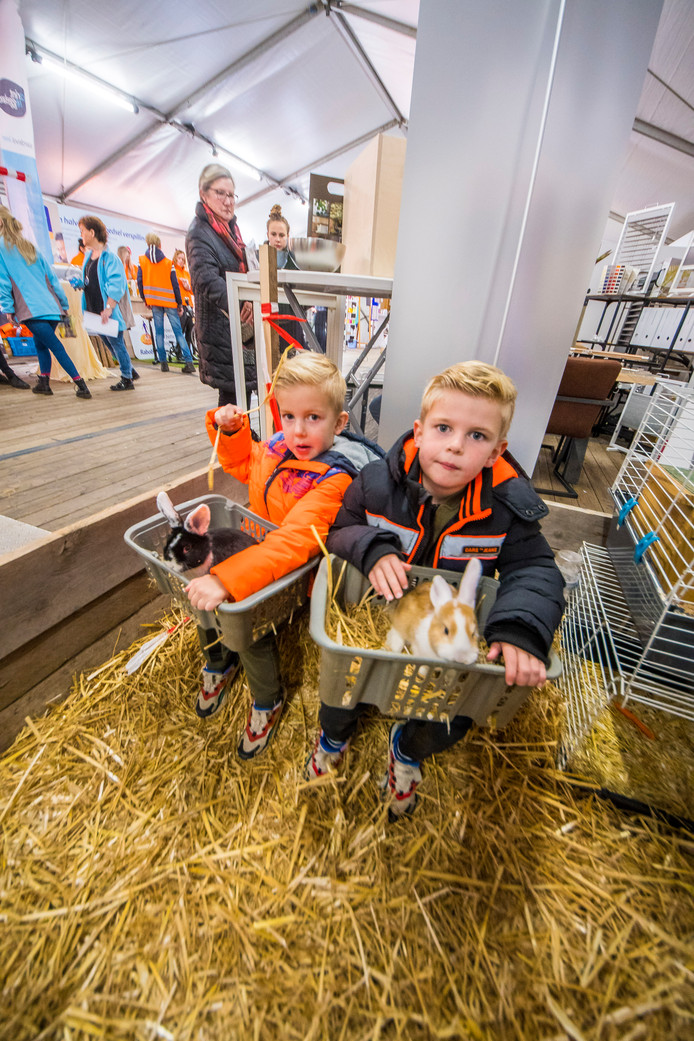 Speciaal voor de jongste bezoekers van de winterfair: Knuffelen met konijntjes.