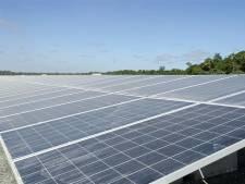 IVN wil geen fors zonnepark in buitengebied Rijssen