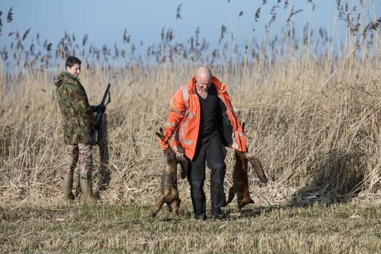 Vier vossen zijn afgelopen weekeinde door jagers doodgeschoten in de noordelijke Eempolders. Vossen jagen op bedreigde weidevogels in de polders en daarom is afschot nodig, legt natuurbeheerder Jan Roodhart uit.