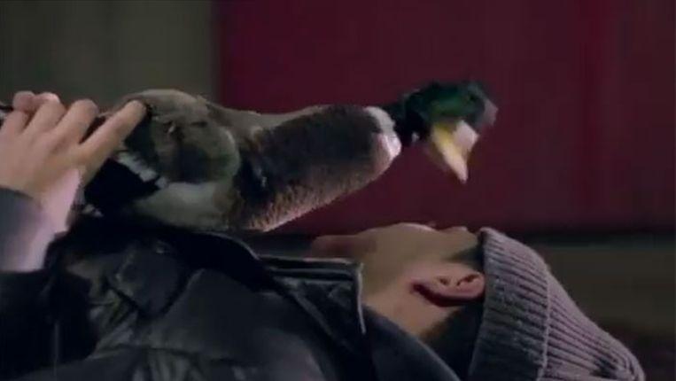 Get Up (Rattle) van de Bingo Players - fragment uit de clip. Beeld YouTube
