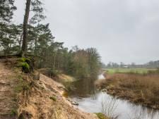 Losser en provincie positief over natuurbegraafplaats in Lutterzand