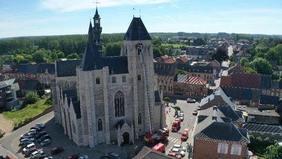 Slechtvalk sterft na urenlange strijd om bevrijding uit het kruis van de toren van de Sint-Leonarduskerk