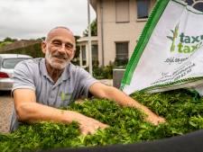 Kilo's taxusnaalden verslepen in strijd tegen kanker: de Taxus Taxi rijdt door de regio om snoeisel op te halen