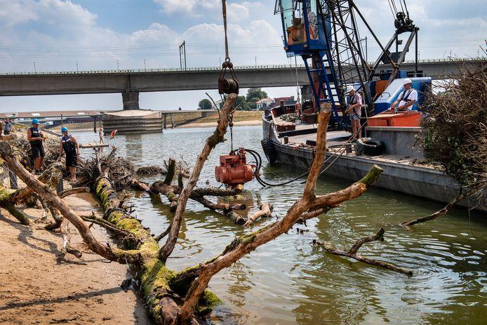 Rijkswaterstaat kiepert vanaf een boot een stuk of acht rivierhoutbomen in de Spiegelwaal.