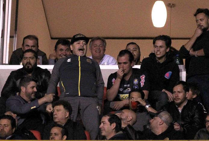 Beroemd Stoppen slaan door bij Maradona na mislopen promotie | Offside | AD.nl HD15