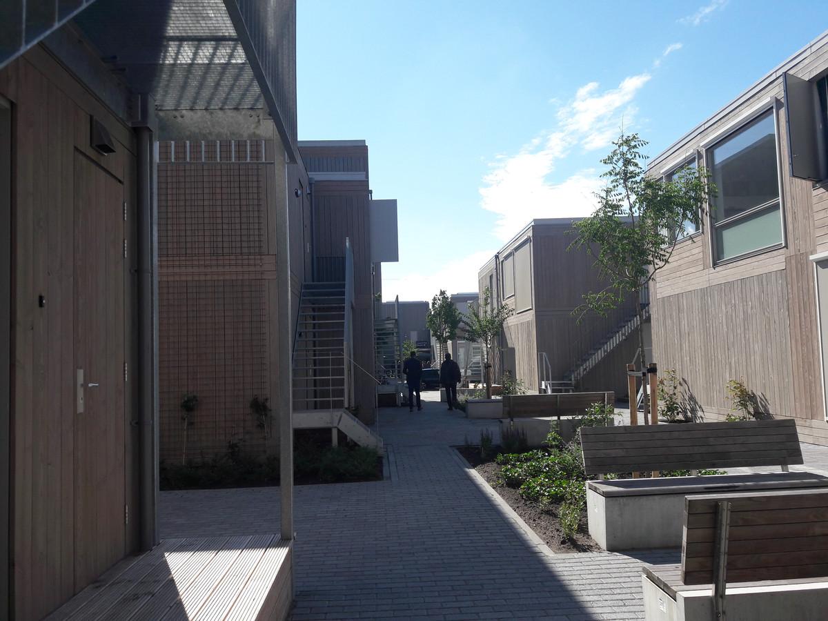 De 43 tijdelijke woningen Cubestee aan de Quinten Matsyslaan in Eindhoven zijn bijna allemaal verhuurd en bewoond.