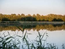 Grote vissterfte in Canisvlietkreek bij Westdorpe
