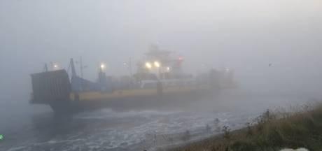 Veerpont tussen Maassluis en Rozenburg vastgelopen in dichte mist