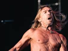Rockfenomeen Iggy Pop (70) als headliner naar Paaspop Schijndel