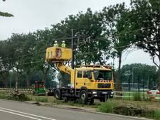 Rijdraden voor Uithoflijn geïnstalleerd