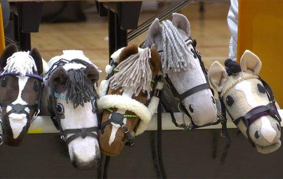 Ruiterschool Beggard geeft zomerkamp met stokpaardjes