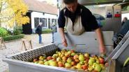 Appels of peren te veel? De 'Mobiele Fruitpers' komt langs op 5 september