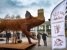 Immens varken als kunst in centrum Nijmegen