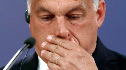 Hongaarse oppositie vormt alliantie tegen Orbán
