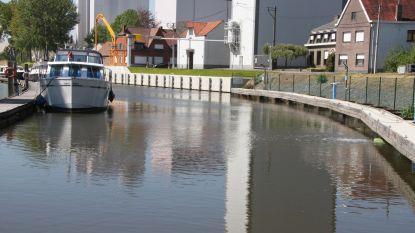 Beluchters moeten massale vissterfte op Schelde voorkomen na stroom bietenpulp