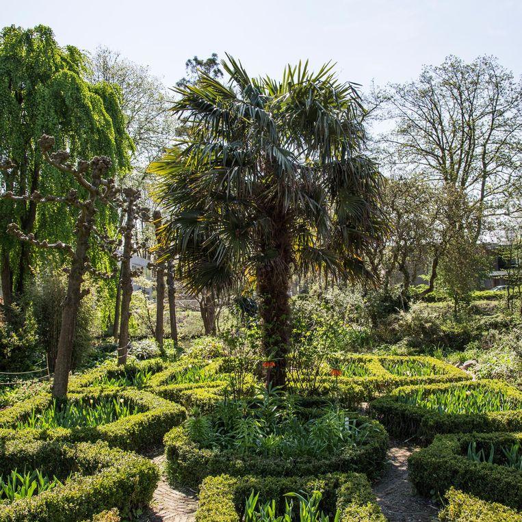 De botanische tuin op de Zuidas Beeld Tammy van Nerum