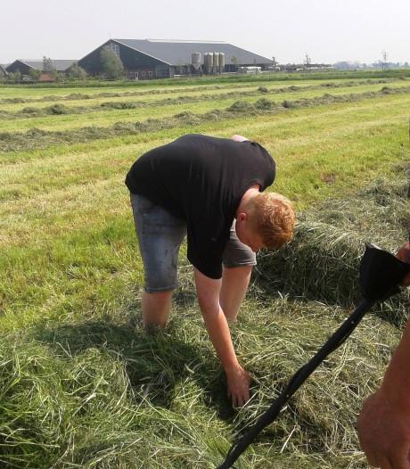 Agriterreur terug van weggeweest: prikkeldraad en keien in gemaaid gras