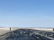 Goudkoorts bij -24 graden: Russen zoeken naar goud dat uit vliegtuig viel
