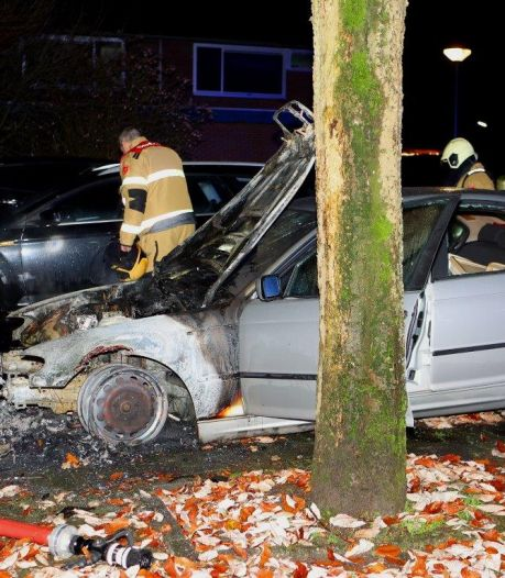 Buurtbewoner gaat autobrand in Vught met tuinslang te lijf