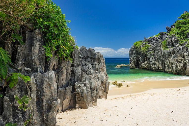 Betoverende stranden zijn het decor voor het werk van Marleen Van Moer. Beeld Shutterstock