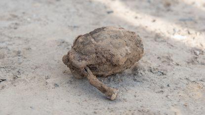 UPDATE • Ontmijningsdienst laat in Ouwegem gevonden granaat uit Eerste Wereldoorlog ter plaatse ontploffen
